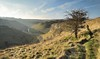 High level path (Andrew Mowbray) Tags: limestone lathkilldale peakdistrict peakdistrictnationalpark monyash parsonstor derbyshire nationalnaturereserves walkinginderbyshire whitepeak