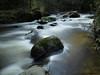 Au fil de l'eau (mick42m) Tags: cascade nd400 fz fz300 eau water rocher pose longue nature rivière arbre forêt