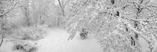 Winter Storm Quinn