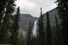 20170903-DSC_0166.jpg (bengartenstein) Tags: canada banff glacier nps glaciernps montana canada150 mountains moraine morainelake manyglacier lakelouise hiking fairmont
