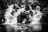 The Cascades (ed027) Tags: ifttt 500px stream downpour waterfall river pond lake flowing water freshwater wet flow creek rain forest rocks long exposure reflection travel tree green light beautiful mono black white blur walk rock stones contrast texture