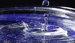 Water Drop (OgniP) Tags: macro water splash drop flash