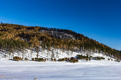 Custer Park 20180223-0018 (Photos By Bob Van) Tags: blackhills csp custerstatepark landscape snow southdakota winter custer unitedstates us