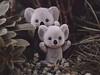 Koala Kuteness [10/52] (Jam-Gloom) Tags: olympus olympusuk olympusomd olympusomdem5 omdem5 60mm28 60mmmacro macro 60mm 60mmmacro28 toy toyography toyphotography succulent succulents toysinthewild toysoutside 1052 week10 10 project52 project522018 2018 52weeks 52weekproject 52 week weeks project sylvanianfamilies calicocritters flockedtoy flockedtoys koala lamb
