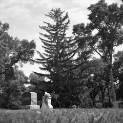 untitled (kaumpphoto) Tags: rolleiflex 120 tlr bw monochrome cemetery tree norwaypine pine grave gravestone stone headstone graveyard marker memorial garden grass sky tall branch needles