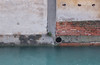 mixed media (Francis Mansell) Tags: wall canal building venice brick brickwork water raindrops pipe concrete dorsoduro