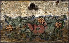 DSC_1643 (Pascal Rey Photographies) Tags: streetart inthestreets strasse rues via calle lyon lugdunum croixrousse xrousse graffitis graffs graffik graffiti tags popart pochoirs pop stencils stencil papiercollé pastedpaper arturbain urbanart urbanphotography wallpaintings walls walldrawings nikon d700 photographiecontemporaine photos photographie photography photograffik photographieurbaine photographiedigitale photographienumérique france murs peinturesmurales peinturesurbaines fresquesmurales fresquesurbaines pascalreyphotographies digikam digikamusers opensource freesoftware sprayart spray