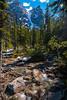 Moraine Lake headwaters (Image 4) (Martin Thielmann) Tags: ab banffnationalpark morainelakeheadwaters rockymountains valleyofthetenpeaks boulders cascadingstreamchannels exposedtreeroots forest