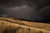 calm before the storm... (Alvin Harp) Tags: january 2018 sonyilce7rm3 fe2470mmf28gm cloudsstormssunsetssunrises stormfront winterstorm i84 ontario oregon natureswonder alvinharp