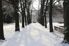 Warszawa_38