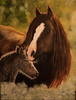 ~In the Glow of Mother's Love~ (♞Jenny♞) Tags: happymothersday intheglowofmotherslove jennygrimm equineart horses foal sunshine warmth love