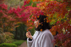 Momijigari Lady (The stranger of Tofuku-Ji) (parenthesedemparenthese@yahoo.com) Tags: dem colors fall femme japan japon montains nb trees woman arbres automne blur canon600d day erables flou holidays journée maples momijigari montagne sanctuaire sanctuary tofukuji vacances