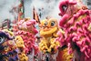 Lion dance (Wingsze Photography) Tags: liondance festival chinese nikond750 135mm photo 攝影發燒友