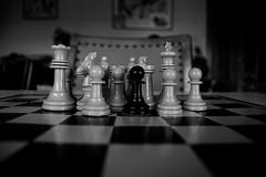 En Tierra de Blancos (Tomás Hornos) Tags: macro bokeh ajedrez chess blackandwhite monocromo blancoynegro juego tablero black d7100