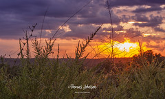 Golden Hour Sunset (Thomas  Johnson Photography) Tags: dixon missouri unitedstates outside outdoors canon digital 40d sunset sunrise goldenhour sunsetting amazing gorgeous scenic sun valley grass hillside clouds blue orange yellow thomasjohnsonphotography ©thomasjohnsonphotography ©2018thomasjohnsonphotography 2018 2016 golden