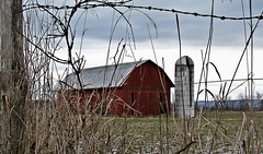 'barn' (Ed_PFF) Tags: old red barn rural country fence winter