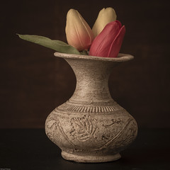 Vase with Tulips (N.the.Kudzu) Tags: home tabletop stilllife vase pottery tulips canon70d industar50mmf35 lightroom