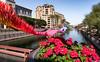 Urban Art (Ron Drew) Tags: nikon d850 scottsdale arizona az art canal arizonacanal city housing winter sculpture kineticsculpture mcdowellmountains preserve arts artsdistrict geranium trees