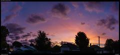 Shades of colour (Falcdragon) Tags: sonya7riialpha ilce7rm2 sonyzeisssonnarfe2835mmza sunset hamilton sky evening colour newzealand light