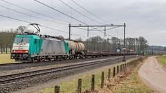 Velp LINEAS 2830 (E186 222) met Sweden Express (Rob Dammers) Tags: velp gelderland nederland nl