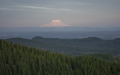 Beautiful view of Mt. Rainer from Capital forest (lapekataylor) Tags: mt rainer capital forest mountain tumwater olympia washington wa wildlife