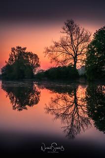 Morgenröte ... kurz vor dem Sonnenaufgang bei Burg Boetzelear, Appeldorn, Kalkar