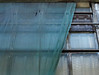 [-] (pienw) Tags: window deelectriciteitsfabriek thehague abandoned