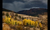 The Brewing Storm (Whitney Lake) Tags: dark stormclouds clouds menacing foreboding brilliant blue orange yellow aspens rockymountains mountains storm creede colorado