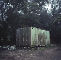 verdant (Tom Kondrat) Tags: taiwan analogue film mamiya6 mediumformat 120 6x6 kodakportra160 container green trees