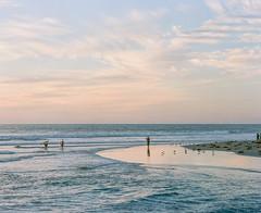 Beach daze (Keegan L) Tags: california sandiego pentax67 67 mediumformat film analog portra400 portra pentax filmlover beach ocean sea pacificocean outdoors landscape nature surfer
