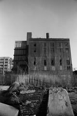 Abandoned Warehouse, Brooklyn (josephkrings) Tags: 1stavenue abandoned brooklyn greenwoodcemetery ilfordhp5 newyork nikkor28105mm13545 nikonn70 sunsetpark blackandwhite brokenglass pier warehouse