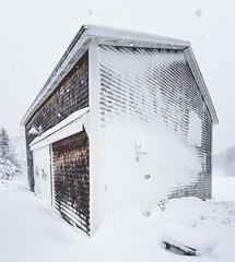 Checking out the snow around the house & barn... - Tenants Harbor Maine (Jonmikel & Kat-YSNP) Tags: maine tenantsharbor me stgeorge oldwoodsfarm farmhouse stgeorgepeninsula midcoastmaine noreaster winter snow wetsnow march backyard woods field barn