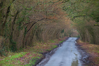 Country B Road Kent