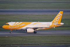 9V-TRD SIN 08.02.2018 (Benjamin Schudel) Tags: scoot tiger airways airbus a320 sin changi international airport singapore 9vtrd
