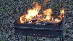 Day of barbecue v10.1 (avvinsk) Tags: day barbecue v101 march 11 2018 1000pm avvi ko