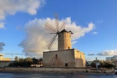 Street Art : Mitħna tax-Xarolla, Triq Sant' Andrija, Iż-Żurrieq, Malta (Nabil Molinari Photography) Tags: streetartmitħnataxxarolla triqsantandrija iżżurrieq malta
