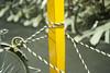 L1019806c (haru__q) Tags: leica m8 leicam8 leitz summicron pole ポール rope ロープ 黄色 yellow