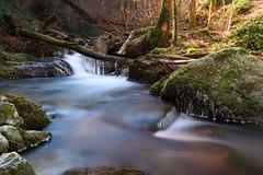 Ruisseau d'Enbarthe II (jpto_55) Tags: ruisseau rivière ruisseaudenbarthe parcrégionalnaturelduhautlanguedoc xe1 poselongue fuji fujifilm fujixf1855mmf284r tarn france eau cascade forêt
