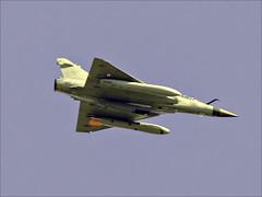 """Dassault """"Mirage"""" (Ken near Duras) Tags: leteich birds bassindarcachon olympusem1 canon400mmf56l metaboneseftomft"""