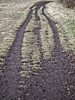 tracks_2018-03-11 (h.m.a.t.s) Tags: steinhof steinhofgründe wien vienna spring suburban olympus olympusomd omd em1
