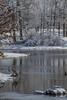 All buddy buddy (active8c) Tags: park heron sandhillcranes reflection