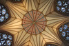 Star (♥ Annieta  pause) Tags: annieta juli 2017 sony a6000 holiday vakantie england scotland uk greatbritain york kathedraal cathedral plafond ceiling allrightsreserved usingthispicturewithoutpermissionisillegal