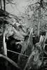 broken tree (Amselchen) Tags: tree broken lakeside falling wood bokeh blur dof depthoffield mono monochrome bnw blackandwhite sony a7rii alpha7rm2 sigmamc11 canon sonyilce7rm2 ef50mmf18ii