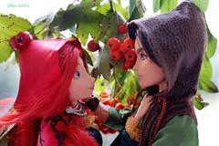 ashberry & hawthorn (Alice_Milich) Tags: ever after high everafterhigh hunter huntsman merida disney