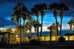 Baja resort (thomasgorman1) Tags: painting processed effects colorized treated resort baja nikon colors sunset dusk trees palmtrees mx mexico