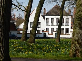 (78) Allemaal Brugge