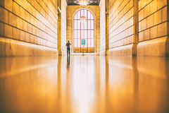 You'll Never Be Lonely Again (Thomas Hawk) Tags: america centralbuilding mainbranch manhattan newyork newyorkcity newyorkcitypubliclibrary newyorkpubliclibrarymainbranch stephenaschwarzmanbuilding usa unitedstates unitedstatesofamerica library us fav10 fav25 fav50 fav100