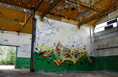 RUBER (RONEA-RUBER-GEK) Tags: ruber gek tream graff graffiti friche urbex green red tag since 2009