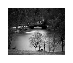 Bass Pond Bridge (Joe Franklin Photography) Tags: biltmore blackandwhite basspond bridge contemplation joefranklin wwwjoefranklinphotographycom almostanything lake pond bw