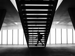 under the stair (René Mollet) Tags: renémollet street streetphotography silhouette streetart streetphotographiebw station oerlikon zürich urban urbanstreet underground urbanlife unterführung blackandwhite bw backlight